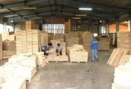 Drvoprerađivači u Ličko-senjskoj županiji su uspjeli opstati