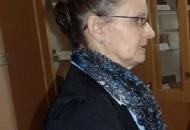 Ravnateljica Lucija Sekula udaljena sa sjednice Školskog odbora