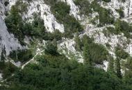 Pogled u divljinu - provedba projekta u Ličko-senjskoj županiji