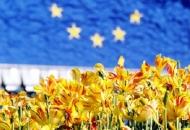 Otvoren natječaj iz zajedničke poljoprivredne politike EU