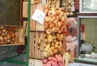 Ponuda voća,povrća i ribe