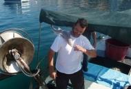 Mladunče morskog psa u mreži senjskog ribara