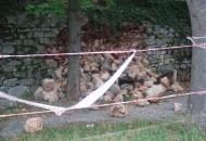 Odronio se stari  zid u Aleju