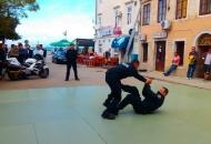 Obilježavanje Dana policije i blagdana sv.Mihovila