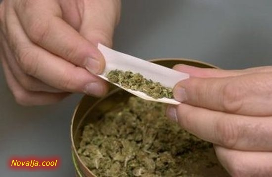 U Novalji i Senju pronađena droga i kokain kod tri osobe