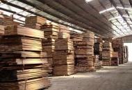 Je li drvna industrija najvitalniji dio hrvatskog gospodarstva?