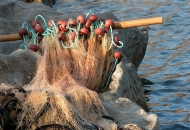 Protekla polovica roka za podnošenje zahtjeva za obustavu ribolova