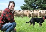 Najbolji mladi poljoprivrednik - otvoren natječaj