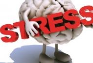 """Predavanje: """"Frustracija i stres - sličnosti i razlike"""""""