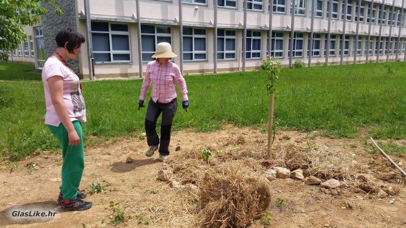 Vrtlariti je lako – nauči kako!