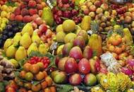 Imaju jesti voće i povrće cijele školske godine