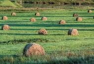 Produljeni rokovi za vaučere u poljoprivredi