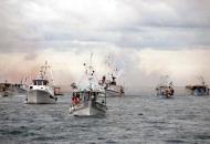 EU kani efikasnije reugulirati ribolov na moru