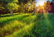 Natječaj za nagrade i priznanja u zaštiti okoliša