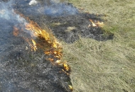 Oprez pri spaljivanju korova!