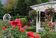Nagradni natječaj: Bira se najljepše uređen travnjak, vrt i balkon u Senju