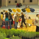 Expo - Senj 2015.