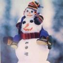 Možda ovakvog snjegovića?