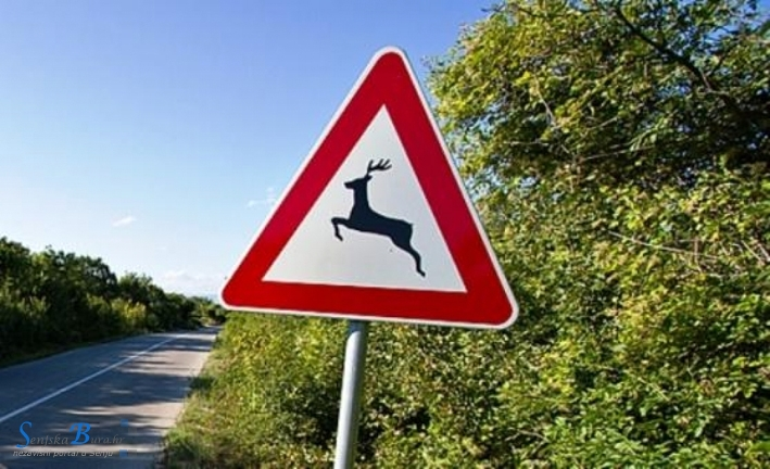 Krali prometne znakove, lažno svjedočili