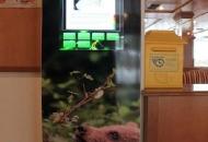 Otvorenje infotočke LIFE DINALP BEAR u Hotelu Jezero