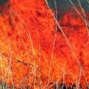 Hrvatske autoceste pokrenule istragu zbog nesreća izazvanih dimom