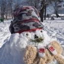 Zimska idila u oku fotografa
