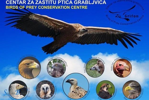 Ugašen Centar za zaštitu ptica grabljivica u Crniki