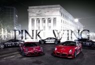 Pink Wing - kroz Ličko-senjsku županiju