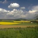 Besplatan online tečaj za poljoprivredno-prehrambena mala i srednja poduzeća