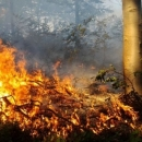 Jučer izgorjelo 20 hektara šume u Kuterevu i Ponorima