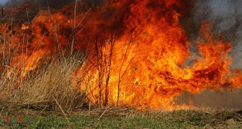 Policija i civilna zaštita pozivaju na suzdržavanje od spaljivanja korova