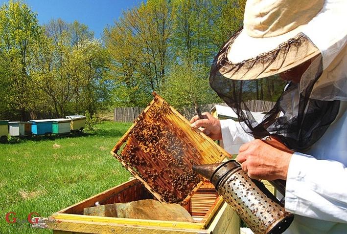 Pčelarima više europskog novca