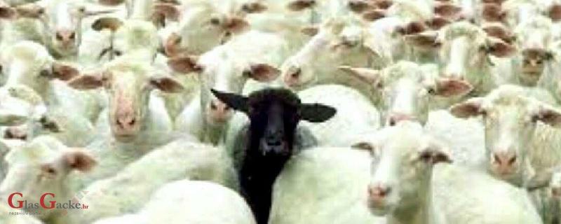 EU reže poticaje seljacima