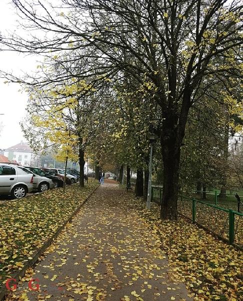 Jesen je