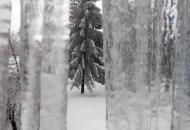 Ledeni zastori