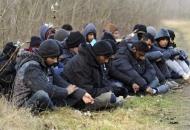 Nijemci traže obavezni seksualni odgoj za izbjeglice koje dolaze