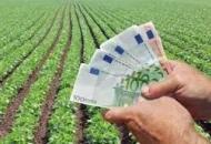 Započele isplate potpora poljoprivrednicima