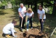 """U hidroelektrani Vinodol održana akcija """"100 zelenih stabala"""""""