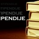 Raspisan natječaj za 24 stipendije