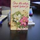 Priče o knjigama otočkog book caffea - kako je bilo s Ivanom