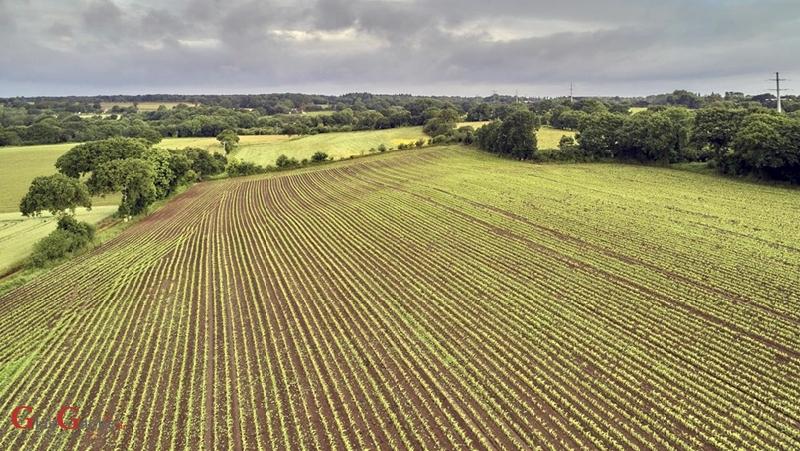 Produžen rok za podnošenje zahtjeva za obnovu poljoprivrednog zemljišta
