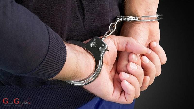 Privedeni krivci koji su pregazili policajca