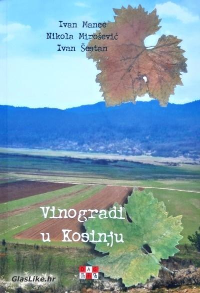 Raritet: Vinogradi u Kosinju