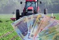 Započinju isplate potpora u poljoprivredi