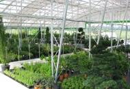 Vrtni centri i rasadnici mogu raditi
