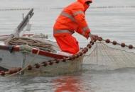 Europska komisija podržala zahtjeve hrvatskog Ministarstva poljoprivrede – stiže pomoć hrvatskim ribarima, prerađivačima i školjkarima