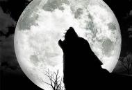 Zavijanje na mesec