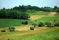 Izmjene natječaja za razvoj nepoljoprivrednih djelatnosti