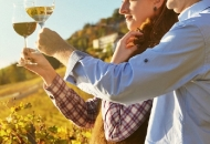 Vučković u Bruxellesu zatražila dodatne potpore za vinare