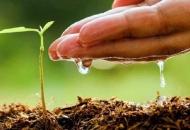 Povećan iznos za osiguravanje usjeva, životinja i biljaka